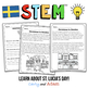 Holidays Around the World STEM Activity: Sweden - NGSS Aligned