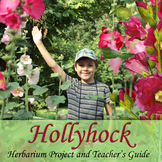Hollyhock: Herbarium Project and Teacher's Guide / Science