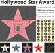 Hollywood Star Award