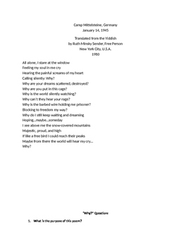 Holocaust Poems and Activity