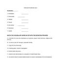 Holocaust Vocab Quiz