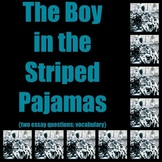 Holocaust studies: The Boy in the Striped Pajamas (two essay Qs & vocabulary)