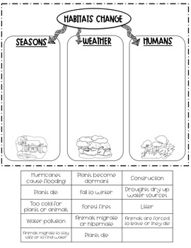 Home Sweet Habitat - A Unit on Habitats