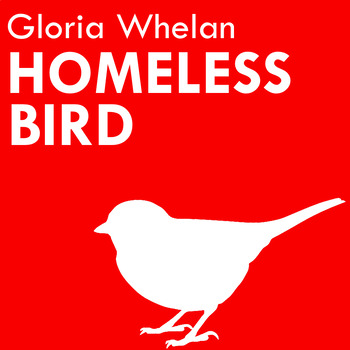 Homeless Bird Novel Study Bundle! (Questions, Organizers, and More)