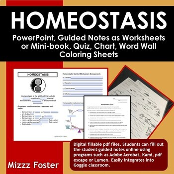 Homeostasis BIG Bundle: ppt, worksheets or minibook, word wall, quiz, chart