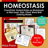 Homeostasis BIG Bundle: ppt, worksheets or minibook, word wall, quiz, chart