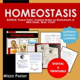 Homeostasis Bundle: PowerPoint, Chart, Guided Notes, Quiz