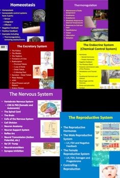 Homeostasis Complete Unit - PowerPoint Lessons, Notes, Worksheets & Assessments
