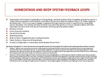 Homeostasis, Feedback Loops, Body Systems Activities