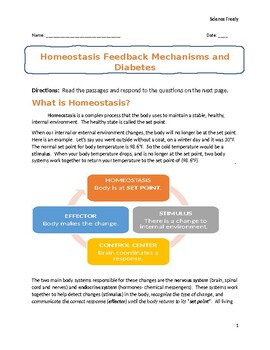 Homeostasis Feedback Mechanisms And Diabetes Activity Print And Go