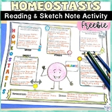 Homeostasis Free Human Body Worksheets and Sketch Note Gra