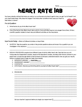 Homeostasis Heart Rate Lab
