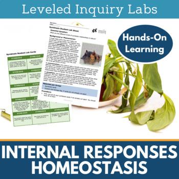 Homeostasis Inquiry Labs - Internal Responses