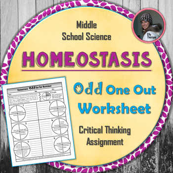 Homeostasis Odd One Out Worksheet