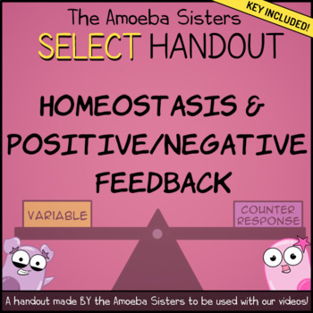 Homeostasis, Positive/Negative Feedback SELECT Handout + Key by Amoeba Sisters