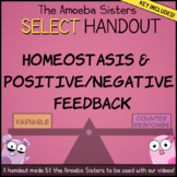 Homeostasis, Positive/Negative Feedback SELECT Handout + K