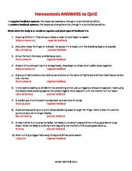 Homeostasis Problem Set or Quiz