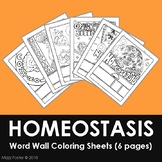 Homeostasis Word Wall Coloring Sheets (6 designs)