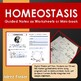 Homeostasis Worksheets and Answers Key, Interactive Notebook
