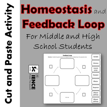 Homeostasis and Feedback Loop Cut and Paste Activity