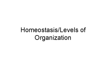 Homeostasis and Levels of Organization Presentation