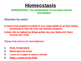 Homeostasis powerpoint