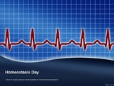 Homeostasis Day - a complete introductory lesson