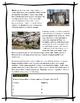 Homes Around The World // Full Unit // Mega Bundle!!!