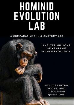 Hominid Evolution Activity