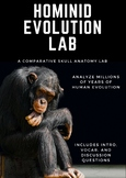 Hominid Evolution Lab