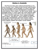 Hominid Station Activity