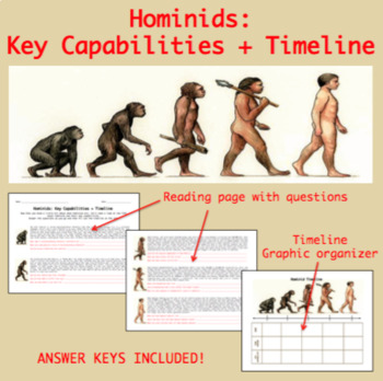 Hominid Timeline Chart plus Answer Key
