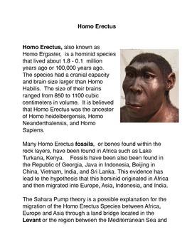 Homo Erectus Common Core Activity