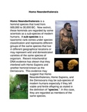Homo Neanderthalensis Common Core Activity