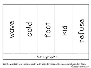 Homograph Interactive Activities {Winter Edition}