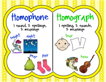 Homograph and Homophone Poster!