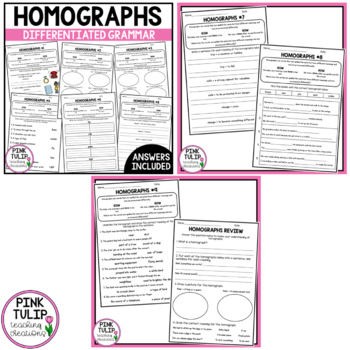 Homographs PowerPoint - Interactive, full lesson