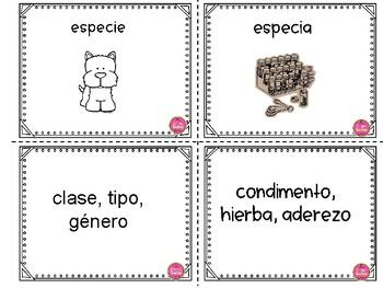 Homographs in Spanish