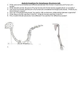 Homologous Structures Lab for Evolutionary Relationships
