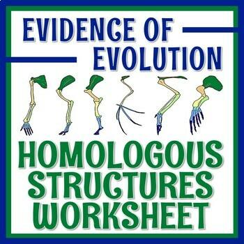 Evolution Evidence Homologous Structures Worksheet NGSS MS-LS4-2 MS-LS4-3