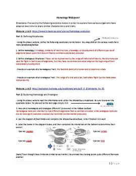 Homology Webquest