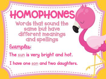 Homonym, Homograph and Homophone Posters Flamingo Tropical Theme