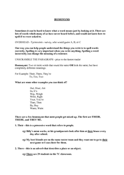 Homonym/homophone Lesson and Spelling Test