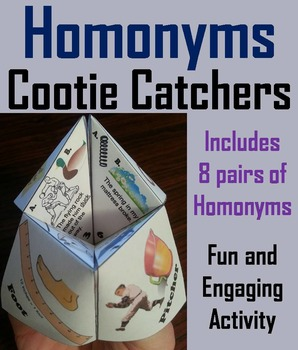 Homonyms Activity 2nd 3rd 4th Grade