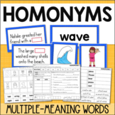 Homonyms Activities, Centers, Worksheets Multiple Meaning Words Grade 2 Grade 3