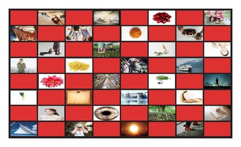 Homonyms-Homophones Checkerboard Game 4