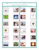 Homonyms-Homophones Worksheet 6