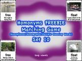Homonyms Matching Game Set 10 Long Vowels FREEBIE