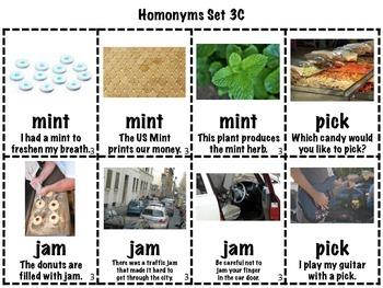 Homonyms Matching Games Sets 1-5 Short Vowels (Homophones/Homographs)