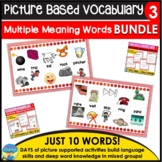 Homonyms Bundle Set 3 Learning and Applying Multiple Meanings Task Cards